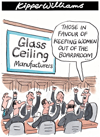 What Is The Glass Ceiling Www Energywarden Net